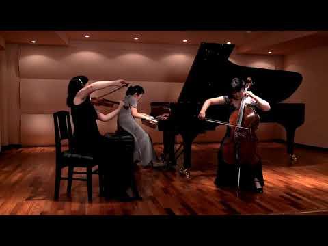 Smetana Piano Trio in G minor Op.15 Fujita Piano Trio スメタナ ピアノ三重奏曲ト短調作品15 フジタ・ピアノトリオ