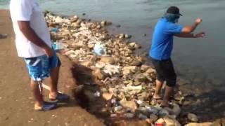Jeddah Fishing