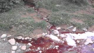 Contaminacion en Tarija.mp4