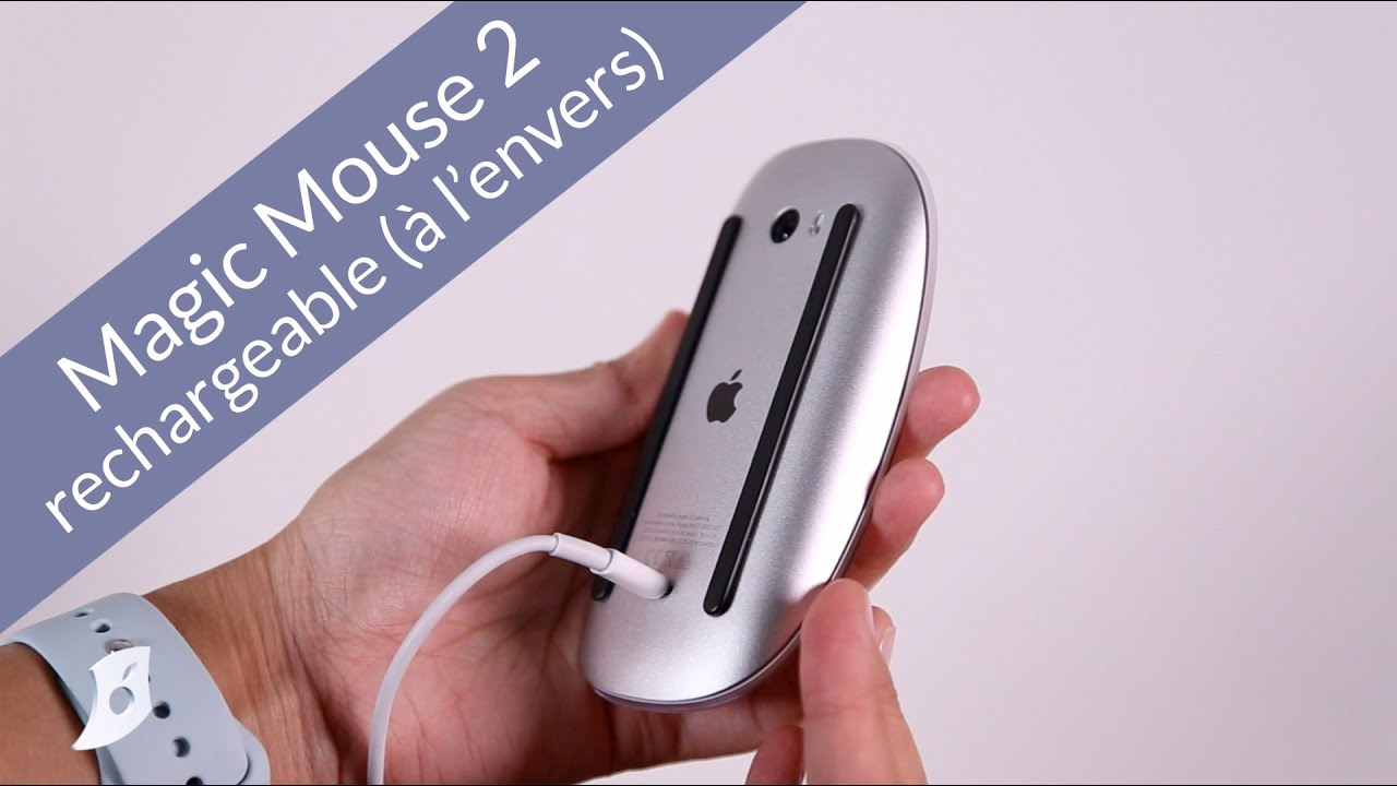 magic mouse how to use