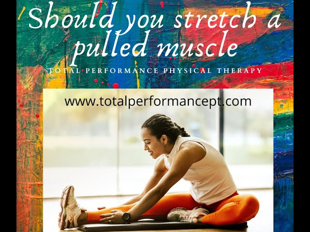 Should you stretch a pulled muscle?