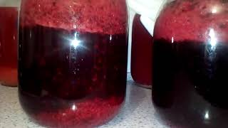 Вино из малины и смородины (красивое брожение!)