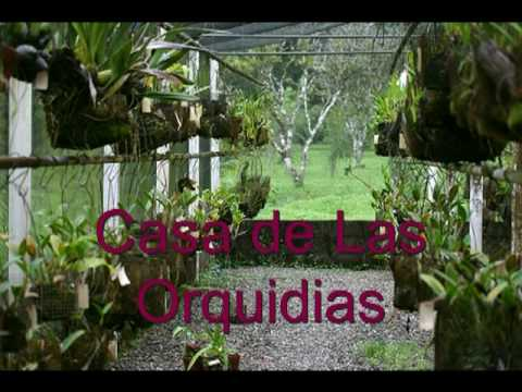 Jardin botanico lancetilla tela honduras youtube for Tela geotextil para jardines
