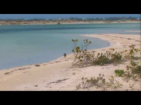 Providenciales, Turks and Caicos | WestJet Vacations