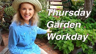 BIG Spider, Planting Okra, Sweetgrass, Zinnias   Garden Workday   Vlog