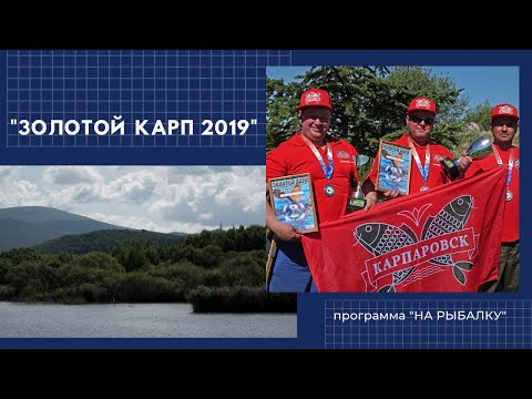Турнир по карпфишингу Золотой карп 2019