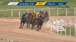 Vidéo de la course PMU PREMIO OSTANA