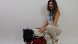 видео Топливная система на двигатель Honda GX 240