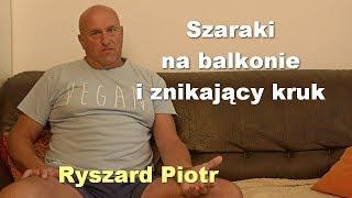 Szaraki na balkonie i znikający kruk - Ryszard Piotr