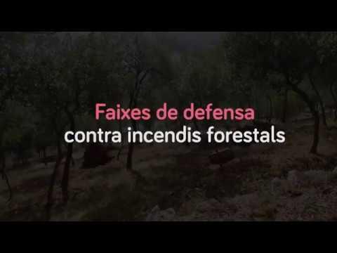 Faixes de defensa contra incendis forestals