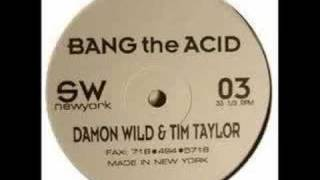Damon Wild & Tim Taylor - Bang The Acid