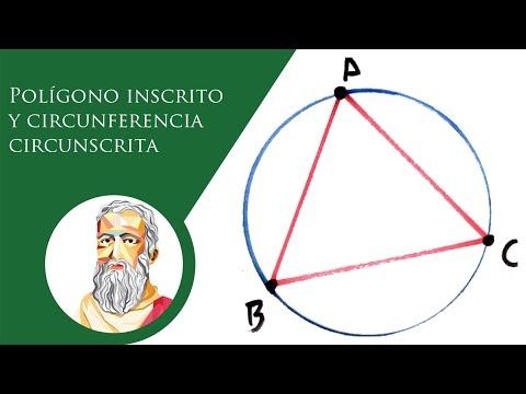 polígono-inscrito-y-circunferencia-circunscrita-|-baldor