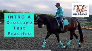 Intro A Dressage Test Learning Tool