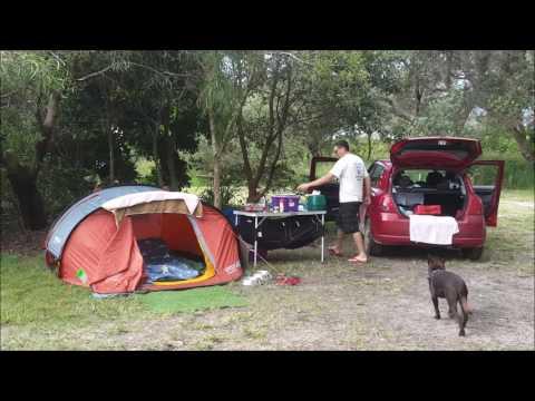 Kelpie Camping Buzz Style