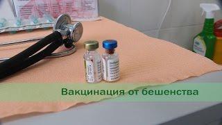 Вакцина от вируса бешенства Nobivac Rabies