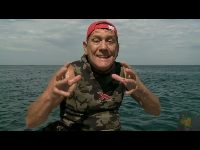 Shark Rider The Wildlife Man TV Series