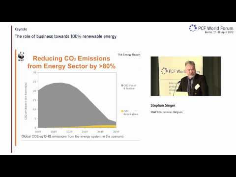 STEPHAN SINGER (WWF) - THE ROLE OF BUSINESS TOWARDS 100% RENEWABLE ENERGY