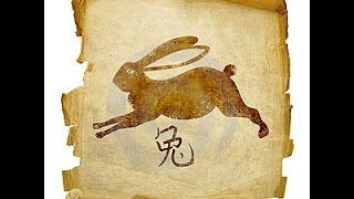 Гороскоп КРОЛИК КОТ на 2017 год  Китайский Гороскоп 2017 кролик женщина и кот 2017 мужчина