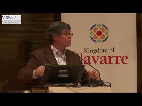 26 Session 4: Salvador Antón MOVE 2017 International Conference (Pamplona, Navarra)