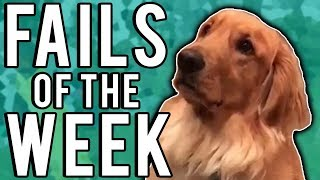 Best Fails of the Week #2 (February 2018) || FailUnited