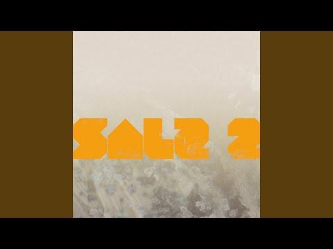 various artists salz 2 1