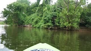 Kayaking The James River [Lumix GX-85 4K]