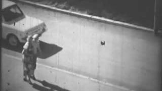 г.Воркута, пос.Воргашор, 20.07.1980г.