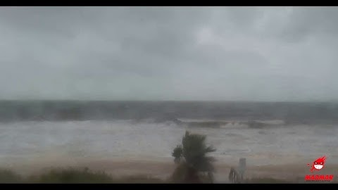 Hurricane Michael - Live Cams