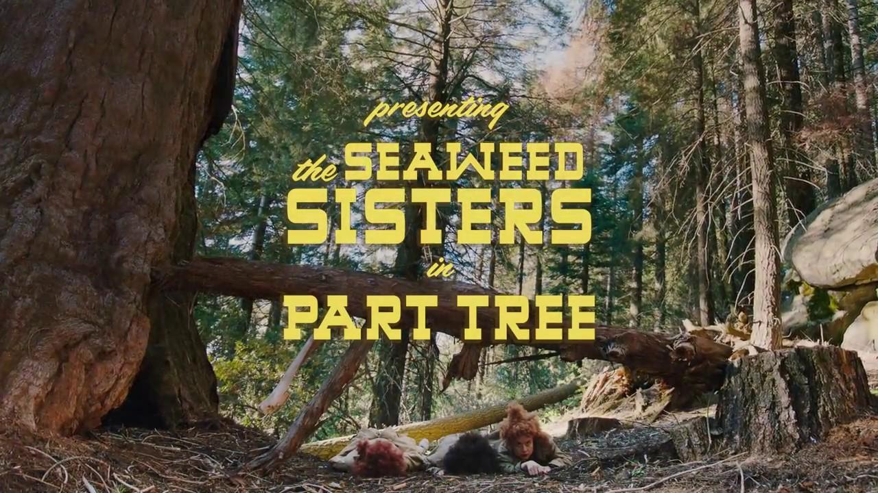 The Seaweed Sisters: Part Tree