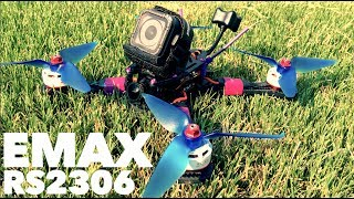 EMAX RS2306 2400kv with AVAN Props!!