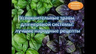 Успокоительные травы  для нервной системы:  лучшие народные рецепты