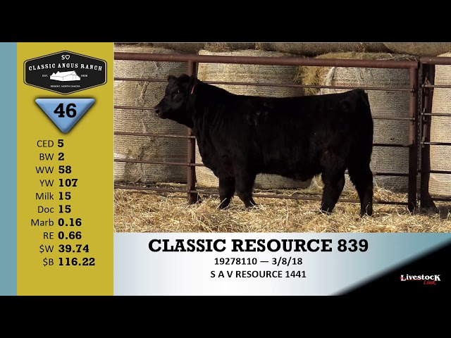 Classic Angus Ranch Lot 46