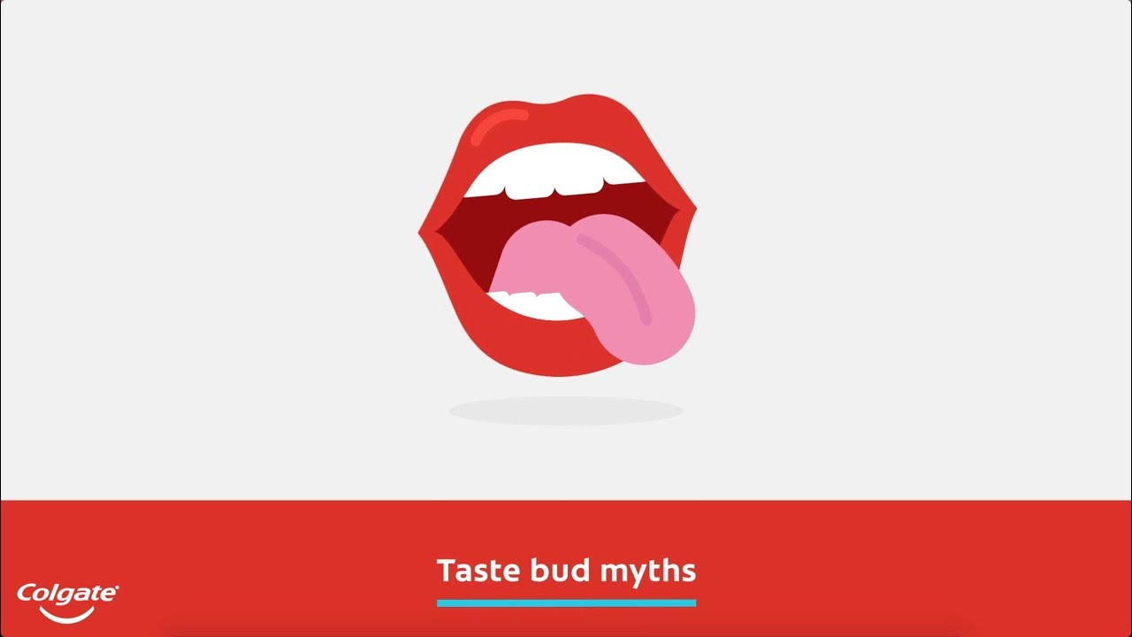Common Myths And Facts About Your Tastebuds Colgate Youtube