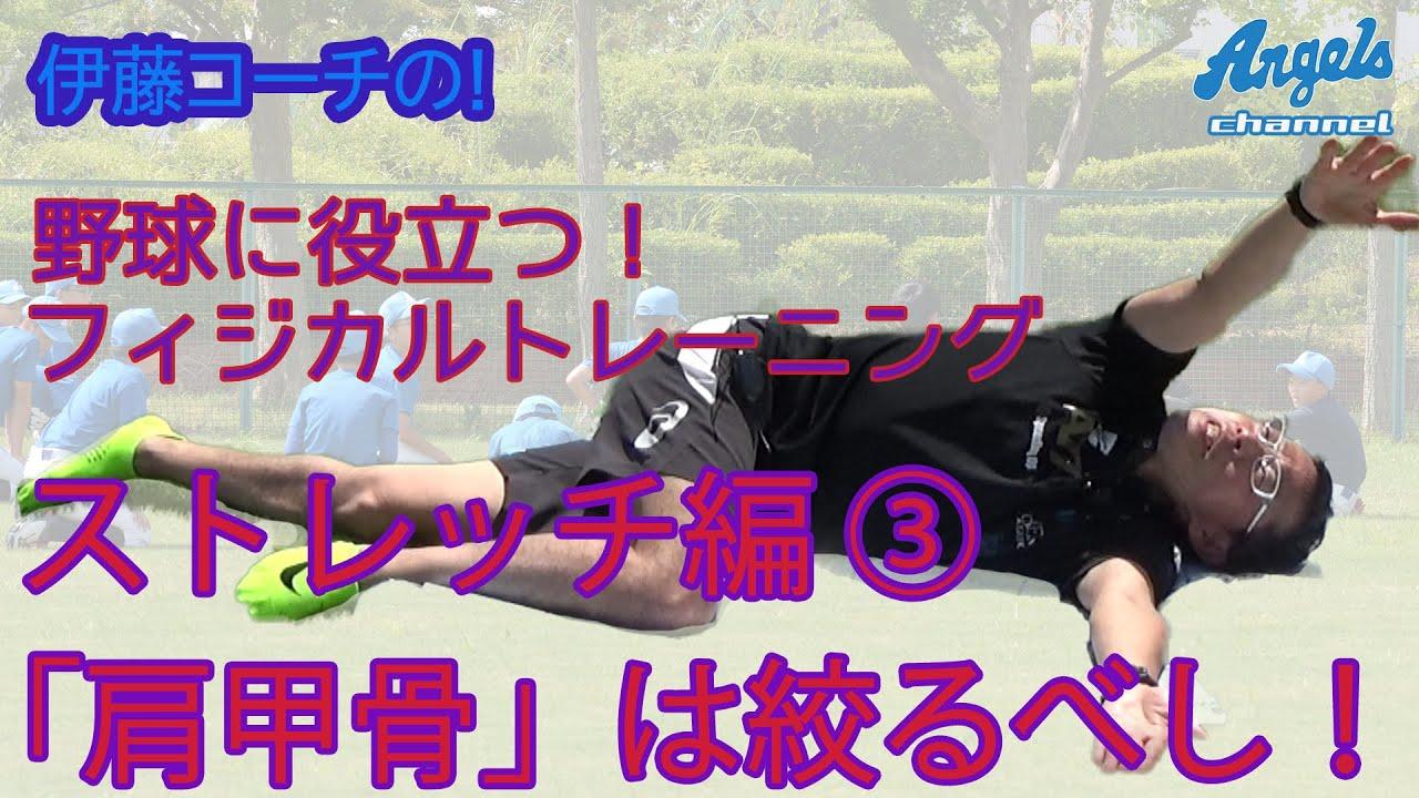 野球に役立つフィジカルトレーニング/ストレッチ編③