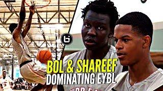 Bol Bol & Shareef O