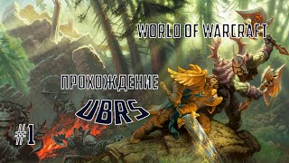 WoW Classic рейд в UBRS/УБРС