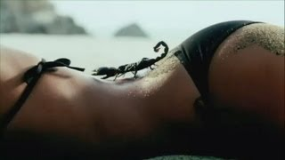 top 5 sexiest superbowl ads five sexy super bowl xlvii 2013 commercials