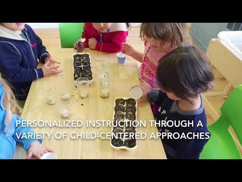 Lango NYC Spanish & Mandarin Immersion Preschools