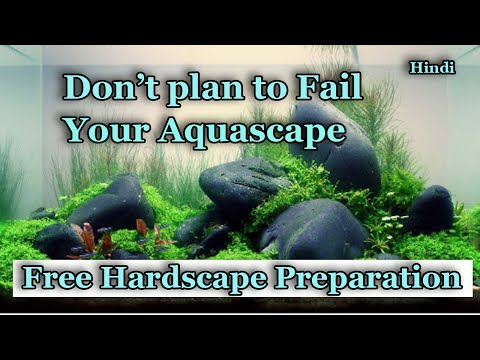 Don't plan to fail your Aquascape | Happy fins and nature