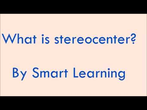 What is Stereocenter? Optical Isomerism : LN-22  CLASS XI CHEMISTRY