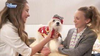 Minnie's Fashion Challenge | Dog Designer | Official Disney Channel UK