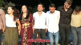 #govend #halay #kürtçehalay Xezaye düğünleri,hılavetin u şêxani