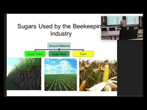 ***Lessons Learnt*** The Importance Of Quality Feed For Honey Bees (Recorded Webinar)