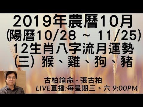 201910(10/28~11/25) 12 ()