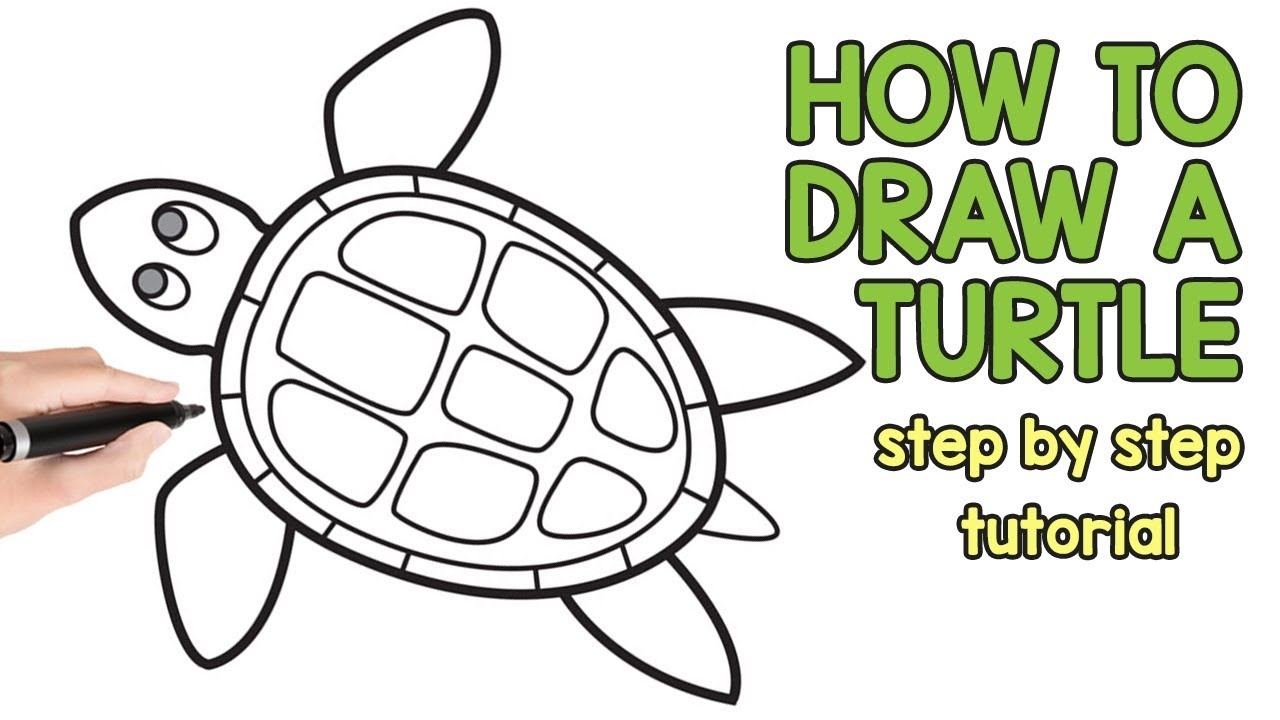 how to draw a turtle step by step drawing tutorial youtube