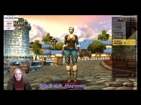 World of Warcraft Classic Leveling