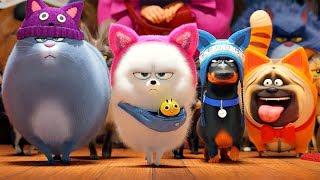 Тайная жизнь домашних животных 2 — Большой русский трейлер (2019)