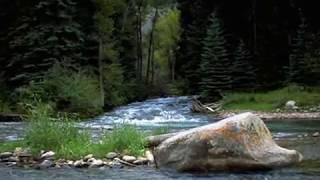 MUZYKA RELAKSACYJNA- OCZAROWANIE(Wędrówka po lesie)