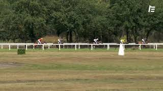 Vidéo de la course PMU GRAND CRITERIUM DES 12,5%