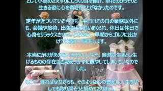 【かけがえのない人生だから…】 中田総司でございます。 皆さま、おめで...